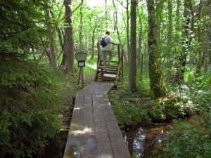 Naturreservat i Motala